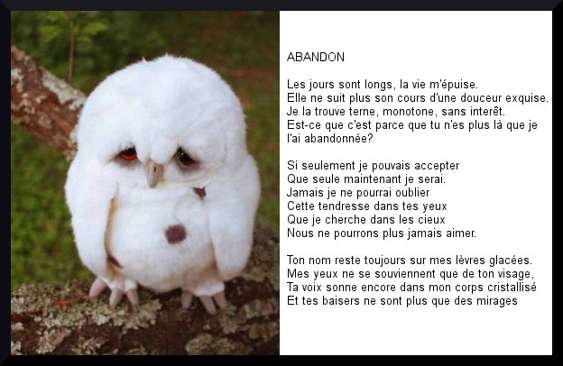Poeme Amour Poeme Abandon
